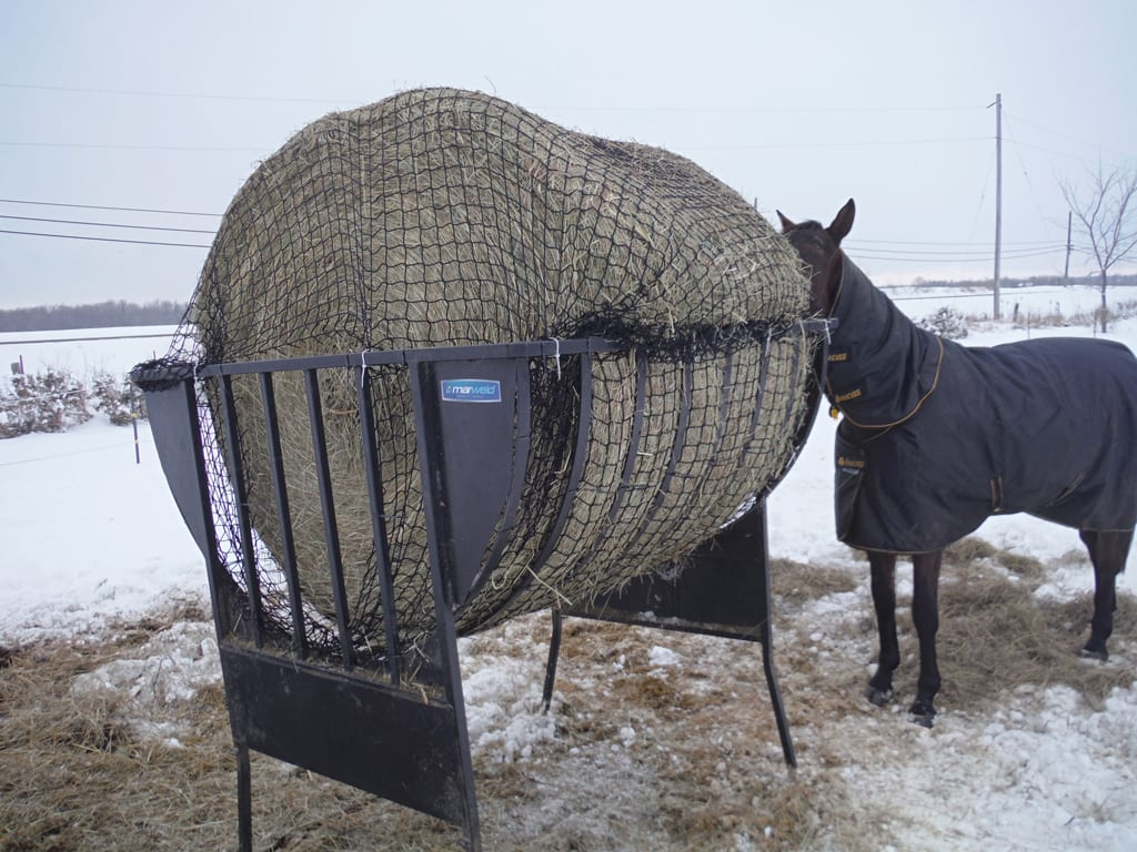 round bale with net in feeder