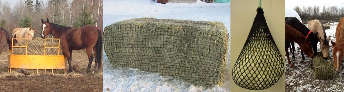 variety of slow feed hay nets with horses eating